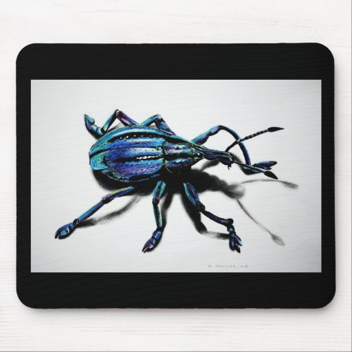 Productos azules del gorgojo tapetes de raton