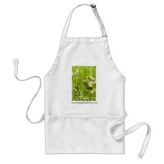 Productos de California de la mariposa de Yosemite Delantal