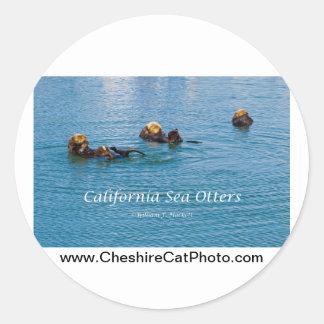 Productos de California de la nutria de mar de Pegatina Redonda