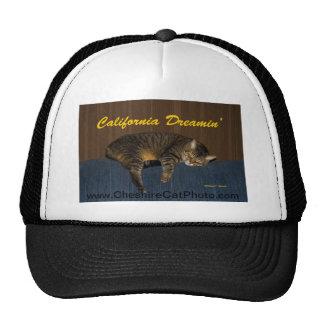 Productos de California del gato de California Dre Gorro De Camionero