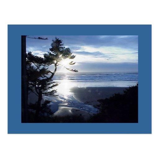 Productos de la costa de Oregon Tarjetas Postales
