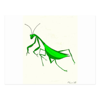 Productos de la mantis religiosa postales