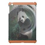 Productos de la panda