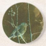 Productos del arte del Birdsong Posavasos Manualidades
