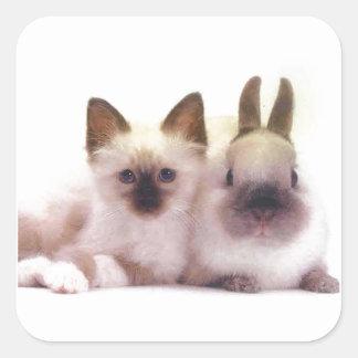 Productos del gatito y del conejito pegatina cuadrada