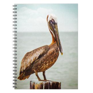 Productos del pelícano spiral notebooks