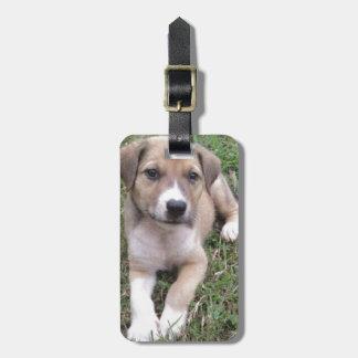 Productos del perrito del rescate de Luv Etiqueta Para Maleta