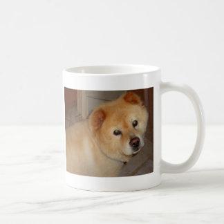 Productos del perro chino taza