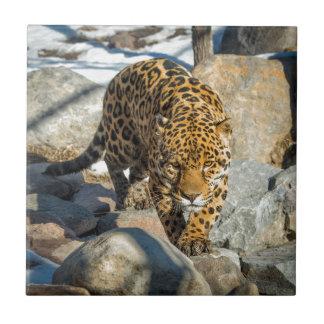 Productos del personalizado de Jaguar Azulejo Cuadrado Pequeño