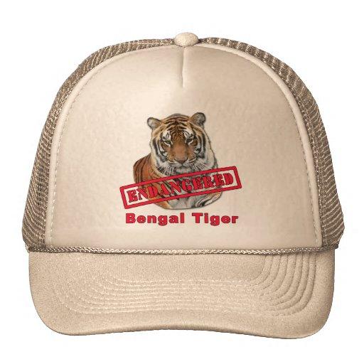 Productos en peligro del tigre de Bengala Gorros