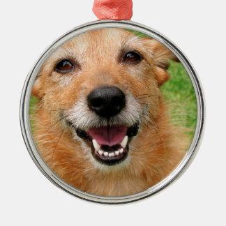 Productos felices del perro del fallecimiento gruñ ornamento de navidad