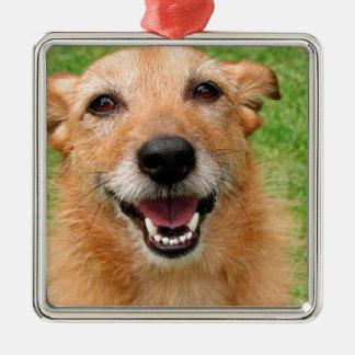 Productos felices del perro del fallecimiento gruñ adorno