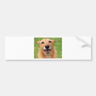 Productos felices del perro del fallecimiento gruñ pegatina para auto