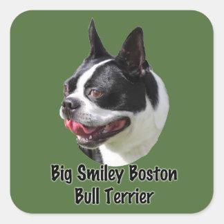 Productos multi sonrientes grandes de Boston bull Pegatina Cuadrada