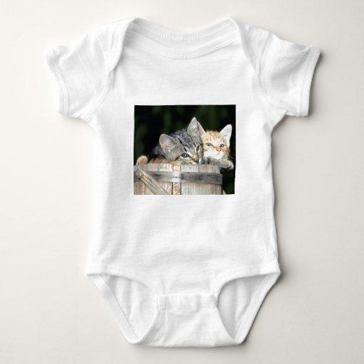 Productos múltiples del gato del gatito camisas
