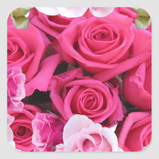 Productos rosados del rosa y blancos de los rosas pegatina cuadrada