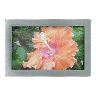 Productos rosados y anaranjados del hibisco hebillas cinturon rectangulares