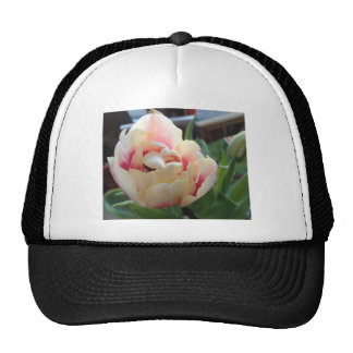 Products with Yellow Pink Tulip Mesh Hat
