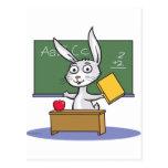Profesor del conejo de conejito postales