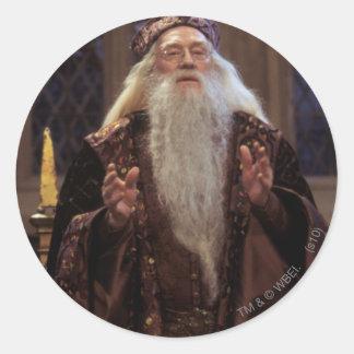 Profesor Dumbledore Etiquetas Redondas