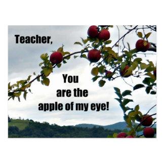 ¡Profesor, usted es la manzana de mi ojo! Postal