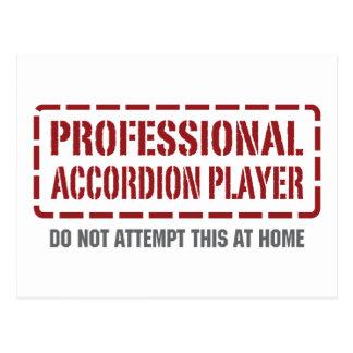 Professional Accordion Player Postcard