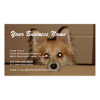 Professional Animal Grooming Business Cards
