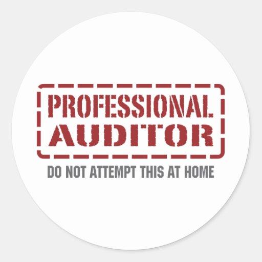 Professional Auditor Round Sticker