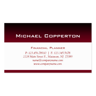 Professional Business Card Financial Planner Red