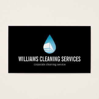 Professional Cleaning Service II Business Card