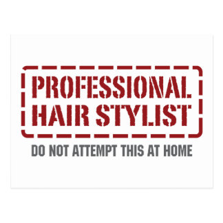 Professional Hair Stylist Postcard