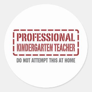 Professional Kindergarten Teacher Round Stickers