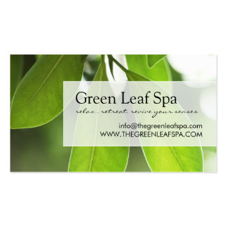 Professional Massage / Spa Business Card