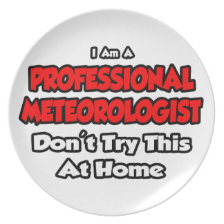 Professional Meteorologist ... Don't Try Party Plate