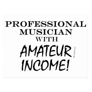 Professional Musician Amateur Income Postcard