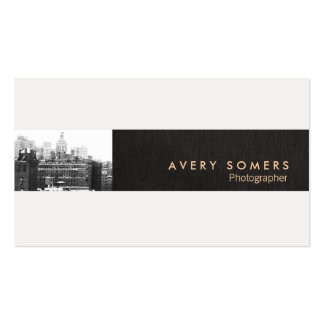 Professional Photographer Photo Insert Photography Double-Sided Standard Business Cards (Pack Of 100)