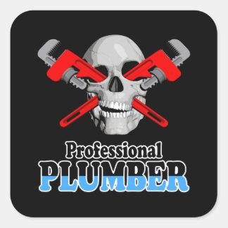 Professional Plumber Sticker