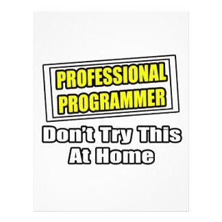 Professional Programmer...Joke Full Color Flyer