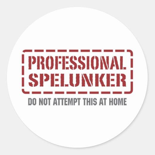 Professional Spelunker Sticker