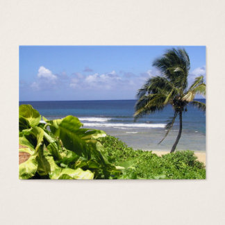 Kauai business cards templates zazzle professional travel business card reheart Image collections