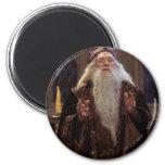 Professor Dumbledore Fridge Magnet