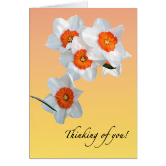 Professor Einstein's Flowers Card