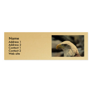 Profile Card - Eagle Double-Sided Mini Business Cards (Pack Of 20)
