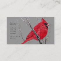 Profile Card - Red Cardinal