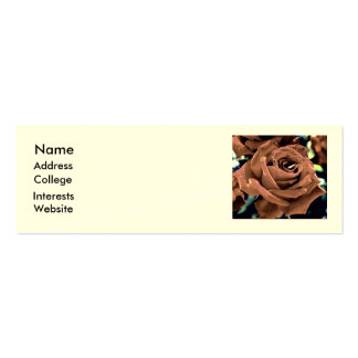 Profile Card - Rose Double-Sided Mini Business Cards (Pack Of 20)