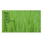 Profile Card Template - Green Grass Texture Business Card