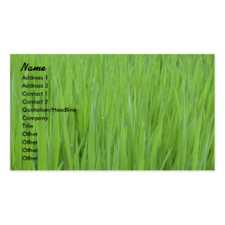 Profile Card Template - Green Grass Texture Double-Sided Standard Business Cards (Pack Of 100)