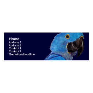 Profile Card Template - Hyacinth Macaw Double-Sided Mini Business Cards (Pack Of 20)
