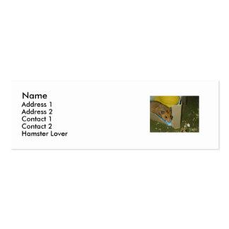 Profile for Hamster Lover Mini Business Card