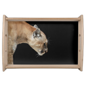 Profile of a Cougar Serving Trays